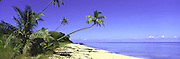 Plantation Island, Fiji,<br />