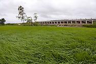 Lush green rice fields surround a dam regulating water flow in Yen Mo District, Ninh Binh Province, Vietnam, Southeast Asia