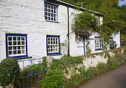 Pretty whitewashed historic cottage in Helford village, Cornwall, England