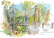 Ravine Experience at the Bellevue Botanical Garden.<br />