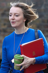 © Licensed to London News Pictures. 08/01/2019. London, UK. Liz Truss - Chief Secretary to the Treasury arrives in Downing Street for the weekly Cabinet meeting. Photo credit: Dinendra Haria/LNP