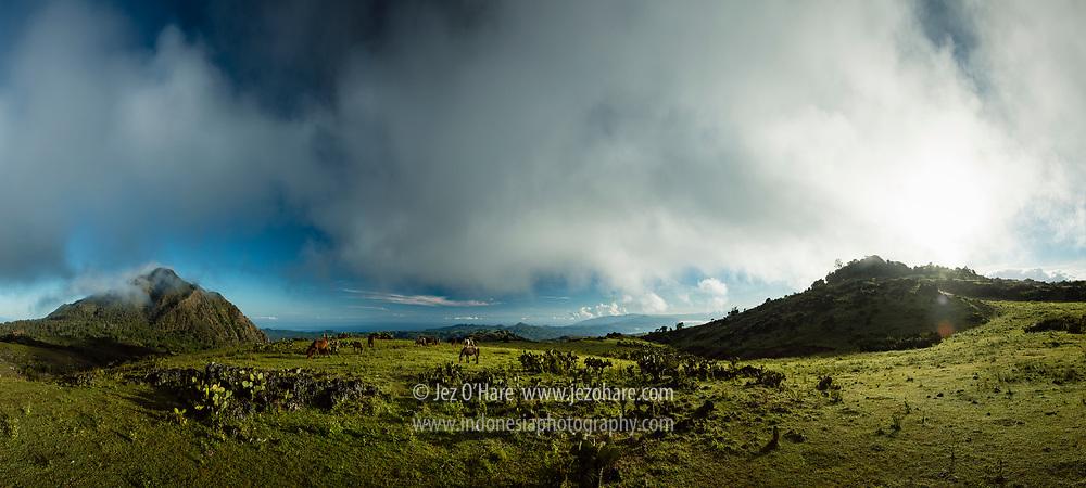 Benteng berlapis tujuh (kanan) dan kuda di Fulan Fehan, Lamaknen, Belu, Timor, Nusa Tenggara Timur, Indonesia. <br /> <br /> Seven layer fort (RHS) and horses at Fulan Fehan, Lamaknen, Belu, Timor, East Nusa Tenggara, Indonesia.