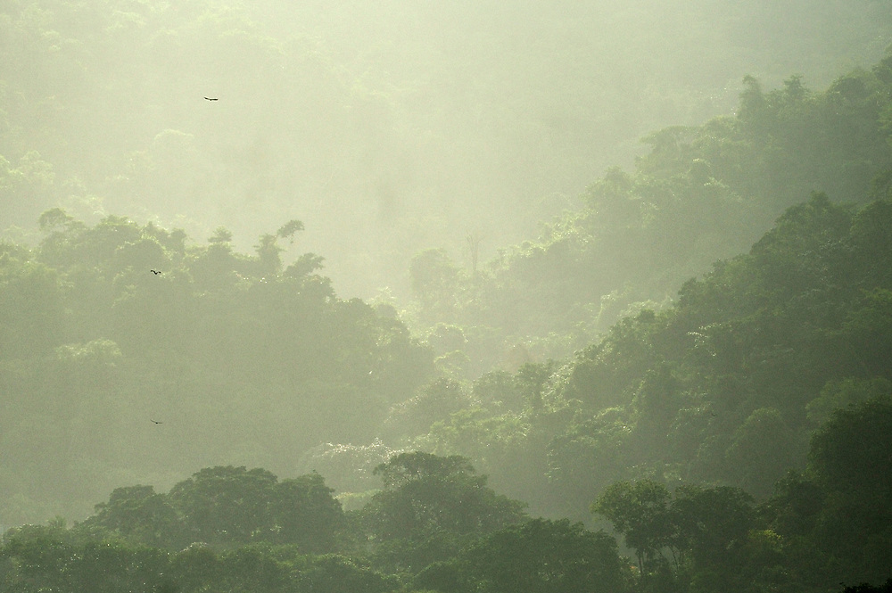 PRIMERA EDICIÓN DE 25 A LA VENTA.<br /> <br /> FIRST EDITION OF 25 FOR SALE.<br /> <br /> -<br /> <br /> El gran sueño | Isla de Taboga / Panamá.