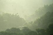 El gran sueño | Isla de Taboga / Panamá.<br /> <br /> Edición de 25 | Víctor Santamaría.