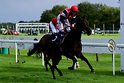Found Out ridden by David Probert and trained by Patrick Chamings in the attheraces.com Median Auction Maiden Stakes - Mandatory by-line: Ryan Hiscott/JMP - 24/08/20 - HORSE RACING - Bath Racecourse - Bath, England - Bath Races