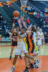 30 December 2009: State Farm Holiday Classic.  Normal Community (NCHS) v UHigh (UHS University High), Girls 3a-4a