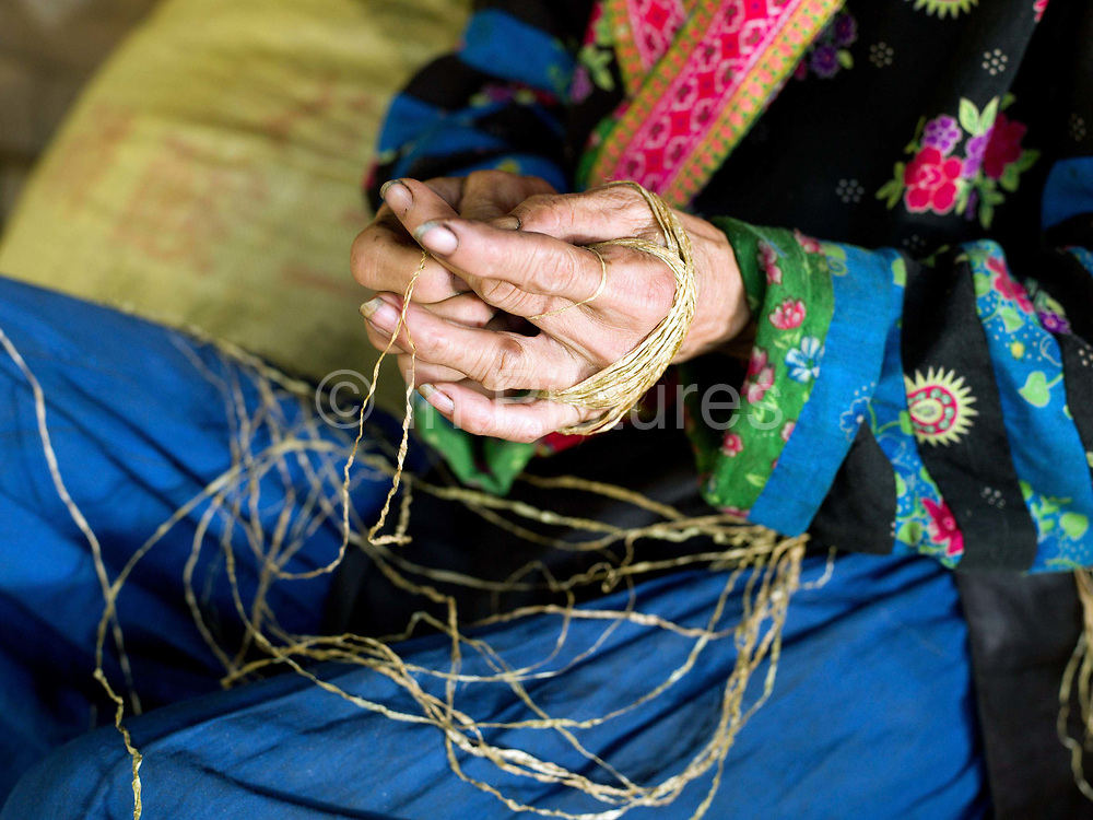 An elderly Hmong woman twisting lengths of hemp bark together to form one long yarn, Ban Tatong, Phongsaly province, Lao PDR. The yarn is wrapped around the hand in a figure of 8 creating a ball shape. Making hemp fabric is a long and laborious process; the end result is a strong durable cloth with qualities similar to linen which the Hmong women use to make their traditional clothing. In Lao PDR, hemp is now only cultivated in remote mountainous areas of the north. The remote and roadless village of Ban Tatong is situated along the Nam Kang river (an offshoot of the Nam Ou) and will be relocated due to the construction of the Nam Ou Cascade Hydropower Project Dam 7.