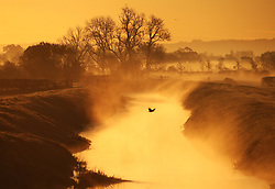 © Licensed to London News Pictures. 8/11/2017. Glastonbury, UK. Sunrise on a frosty morning on the river Brue .Photo credit: Jason Bryant/LNP