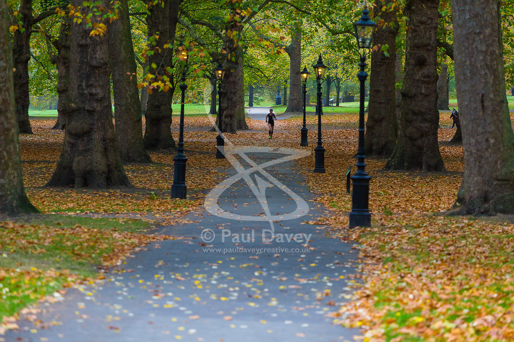 London, October 26 2017. A lone jogger makes her way through Green Park as London wakes up to a cool, misty autumn morning. © Paul Davey