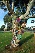 Public artwork on display as part of the annual Trunk Art Wrap Festival in Bassendean, Western Australia. All artworks are made entirely of recycled industrial or domestic waste materials.<br /> <br /> This piece uses discarded hubcaps and wheel trims.