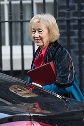 Downing Street, London, February 28th 2017. Environment, food and Rural Affairs Secretary Andrea Leadsom attends the weekly cabinet meeting at 10 Downing Street in London.