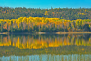 Autumn colors in norhern lake<br />Near Sault Ste Marie<br />Ontario<br />Canada