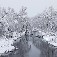 New England Assabet River winter scenery in Westborough Massachusetts during a New England winter snowstorm.<br /> <br /> Massachusetts winter photography images are available as museum quality photo, canvas, acrylic, wood or metal prints. Wall art prints may be framed and matted to the individual liking and interior design decoration needs:<br /> <br /> https://juergen-roth.pixels.com/featured/new-england-winter-at-the-westborough-assabet-river-juergen-roth.html<br /> <br /> Good light and happy photo making!<br /> <br /> My best,<br /> <br /> Juergen<br /> Licensing: http://www.rothgalleries.com<br /> Photo Prints: http://fineartamerica.com/profiles/juergen-roth.html<br /> Photo Blog: http://whereintheworldisjuergen.blogspot.com<br /> Instagram: https://www.instagram.com/rothgalleries<br /> Twitter: https://twitter.com/naturefineart<br /> Facebook: https://www.facebook.com/naturefineart