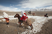 With Ikhbal, 15, a recently married Kyrgyz woman  moving for the first time to her husband's camp..Arriving in Andemin. Going on horse back from Ech Keli to Andemin camp. .She just exchanged the red veil of the unmarried girl for the white veil signifying that she is now a married woman...Trekking through the high altitude plateau of the Little Pamir mountains, where the Afghan Kyrgyz community live all year, on the borders of China, Tajikistan and Pakistan.