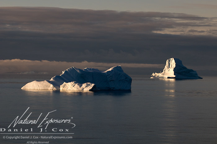 Chunks of the Ilulissat Kangerlua glacier, the worlds most prolific glacier outside of Antarctica make their way out to sea and into Davis Straits, Greenland