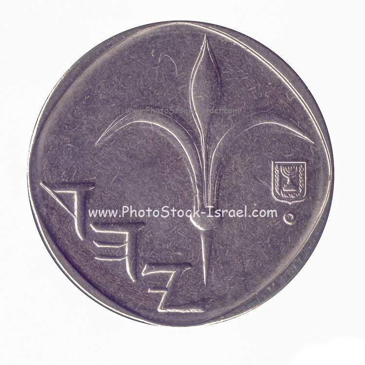 One New Israeli Shekel coin (ILS or NIS) on white background