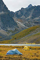 Backcountry camp at Grizzly Lake Tombstone Territorial Park Yukon Canada