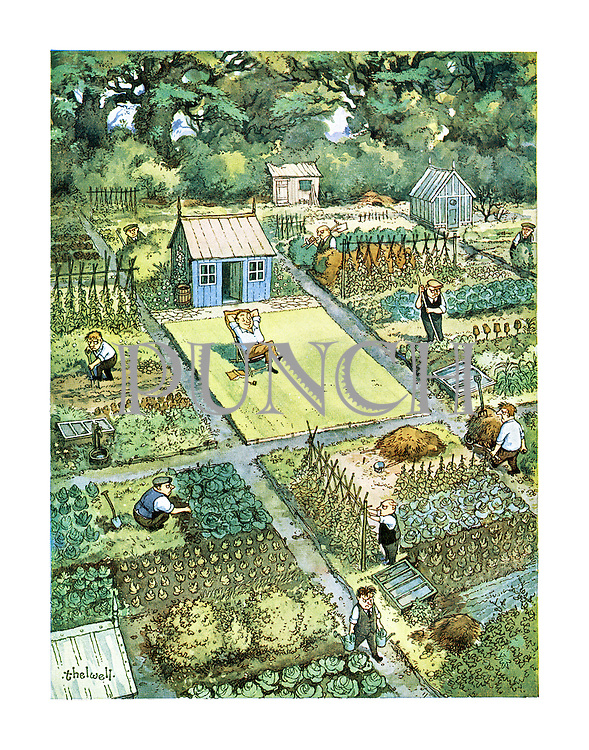 (In the centre of a group of allotments full of people working a man whose allotment is only a lawn relaxes on a deckchair)
