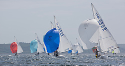 International Dragon Class Scottish Championships 2015.<br /> <br /> Day 1 racing in perfect conditions.<br /> <br /> Fleet, Downwind, GBR720, AIMEE, Julia Bailey, Royal Yacht Squadron\<br /> <br /> <br /> Credit Marc Turner