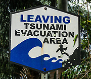 """A bold sign """"LEAVING TSUNAMI EVACUATION AREA"""" shows a person running from waves. Did you notice the bright green gecko clinging to the sign? Introduced to Hawaii, the gold dust day gecko (Phelsuma laticauda) is native to northern Madagascar and the Comoros. It is commonly known as the mascot of GEICO. Laupahoehoe Point County Park, on the Hamakua Coast, Big Island, Hawaii, USA."""