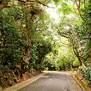 Taiwan Roads