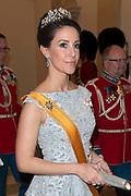Staatsbezoek Denemarken - Dag 1. Staatsbanket in Paleis Christiansborg<br /> <br /> State visit Denmark - Day 1. State Banquet in Christiansborg Palace<br /> <br /> Op de foto / On the photo:  Prinses Marie  / Princess Marie