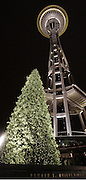 "A 41-foot-tall ""Tree for All at the Needle"" at the Seattle Space Needle with 36,000 LED lights illuminates the night.<br />