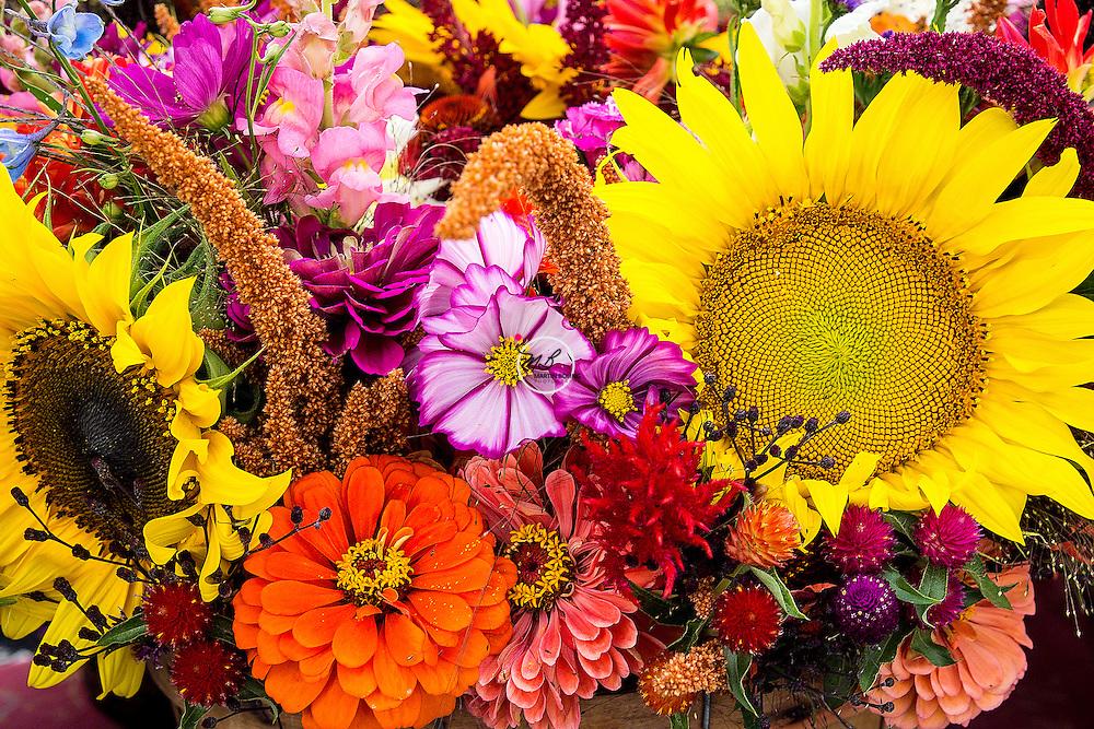 Sarah McGee flower basket