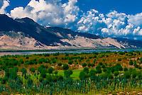 Nedong, Tibet (Xizang), China.