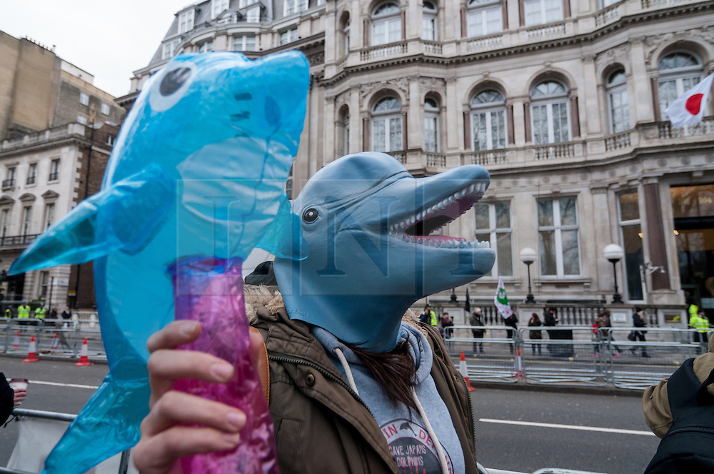 © Licensed to London News Pictures. 18/03/2016. London, UK. Demonstrators gather outside the Japanese Embassy on Piccadilly to protest against the killing of dolphins in Taiji, Japan as well as the cruelty of keeping such mammals in captivity.  This protest comes a day after SeaWorld in the USA announced that it is ending its orca breeding programme. Photo credit : Stephen Chung/LNP