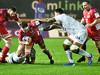 Rugby Union - 2019 / 2020 European Rugby Challenge Cup - Pool Two: Scarlets vs. Toulon<br /> <br /> Aaron Shingler,  of Llanelli Scarlets attacks , at Parc y Scarlets, Llanelli.<br /> <br /> COLORSPORT/WINSTON BYNORTH