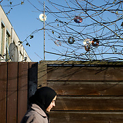 "Nederland Utrecht 31 januari 2009 20090131 Foto: David Rozing ..Serie vogelaarwijk Kanaleneiland .Reportage documentary on deprived area / projects "" Kanaleneiland "" This area is on a list with projects which need help of the government because of degradation in the area etc.Moslima, cd's in boom, versiering, antenne schotel, ..islam, islamic, project, suburb, suburbian, problem. Neighboorhood, neighboorhoods, district, city, problems, multicultural, immigrant, immigrants, cultural diversity, daily lifeFoto: David Rozing"