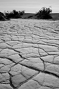 Patterns of cracked mud flats in Death Valley National Park, CA