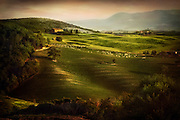 Rolling farmland in the early morning, Tuscany, Italy
