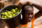 Vendor carrying a bucket full of karité fruit. Besides beeing used as food, karité is also used on the cosmetic industry by processing the butter made with it.
