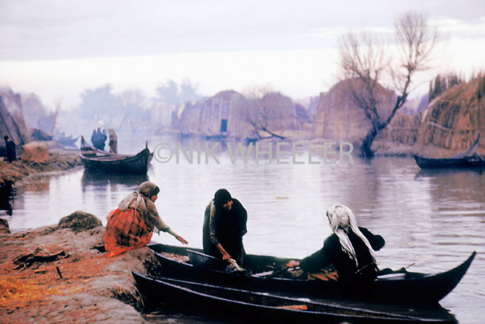 Marsh Arab village in the wetlands of Southern Iraq where the Tigris and Euphrates Rivers meet