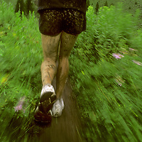 Runner in rainstorm near Jackson, Wyoming.