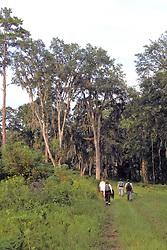 Earthwatchers In Field