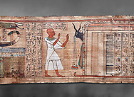 Ancient Egyptian Book of the Dead papyrus - Aaner Book of the Dead, Thebes - 21st Dynasty (1076-943C).Turin Egyptian Museum. Grey Background<br /> <br /> During the 21st Dynasty the number of spells in Books of the Dead was often reduced in favour of decrative panels. small illustrated vignettes take up a large part of the papytus surface .<br /> <br /> If you prefer to buy from our ALAMY PHOTO LIBRARY  Collection visit : https://www.alamy.com/portfolio/paul-williams-funkystock/ancient-egyptian-art-artefacts.html  . Type -   Turin   - into the LOWER SEARCH WITHIN GALLERY box. Refine search by adding background colour, subject etc<br /> <br /> Visit our ANCIENT WORLD PHOTO COLLECTIONS for more photos to download or buy as wall art prints https://funkystock.photoshelter.com/gallery-collection/Ancient-World-Art-Antiquities-Historic-Sites-Pictures-Images-of/C00006u26yqSkDOM