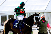 Il Sicario ridden by Rhys Clutterbuck and trained by Bill Turner - Mandatory by-line: Dougie Allward/JMP - 10/07/2020 - HORSE RACING - Bath Racecourse - Bath, England - Bath Races