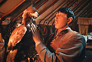 A young man proudly displays his eagle inside his yurt. Eagles, blinded in order not to bite its owner, are used to hunt to catch rabbits, baby wolves, marmots etc. The fur of these animals are sold in towns. Wetsren Mongolia.