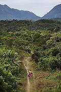 Landscape near San Jose village. Toledo Cacao Growers' Association (TCGA), San Jose, Toledo, Belize. January 25, 2013.
