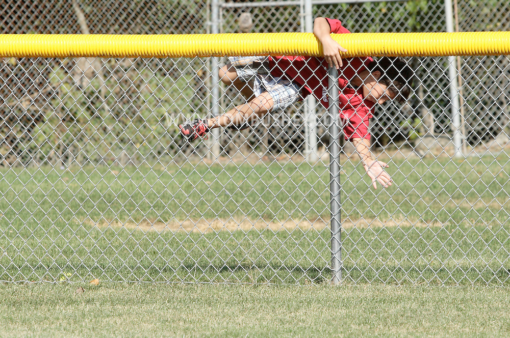 Scotchtown, New York - A boy climbs over the outfield fence to retrieve home run balls at the Wiffle for Kids charity Wiffle Ball tournament at the Town of Wallkill Little League fields on Sept. 25, 2010.