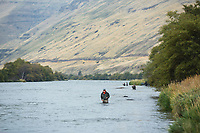 Steelhead fly fishing on the Deschutes River in eastern Oregon.