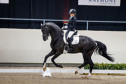 Scholtens Emmelie, NED, Koning<br /> KWPN Hengstenkeuring 2021<br /> © Hippo Foto - Dirk Caremans<br />  06/02/2021
