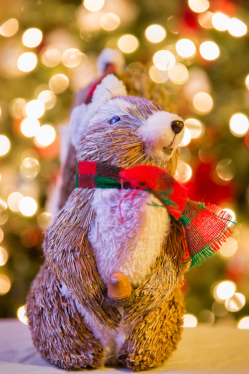 Knowing my affinity for all things squirrel, My wife bought me a festive decoration for my office. And it's nice to see the fella has an acorn already... I just think the designer could have chosen better placement for him to be holding it....