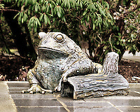Bronze frog statue at Bellevue Botanical Gardens - crop desat