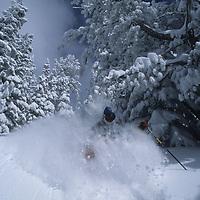 Larry Williamson powder skiing on snowcat-serviced runs, Grand Targhee, Idaho.