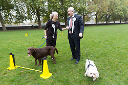 © Licensed to London News Pictures. 26/10/2017. LONDON, UK.  TRACEY BRABIN MP and her dog, Rocky with WAYNE DAVID MP and his dog, Alice at the Westminster Dog of the Year Competition held in Victoria Tower Gardens. The Westminster Dog of the Year Competition is organised jointly by the Kennel Club and the Dogs Trust..  Photo credit: Vickie Flores/LNP