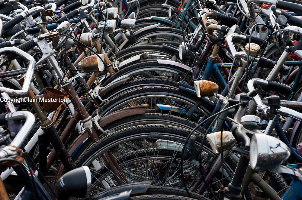 Many bicycles parked in public park in The  Netherlands